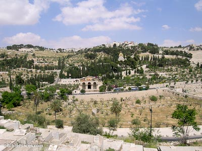 Mount-of-Olives-and-Garden-of-Gethsemane,-tb051706549-bibleplaces