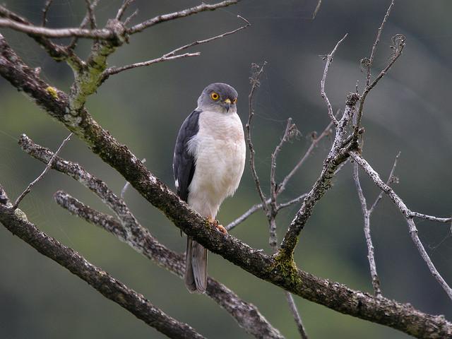 Masoala National Park